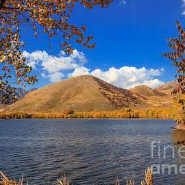 Fall At Mantua Reservoir by Robert Bales