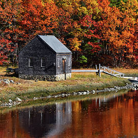 Fall at Rye by Tricia Marchlik