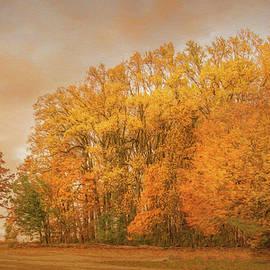 Jeff Oates Photography - Fall at Wayne