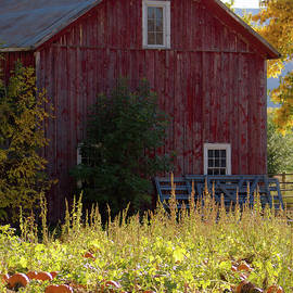 Jennifer Myers - FAll Barn