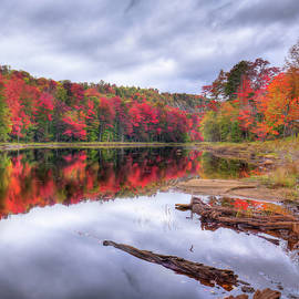 David Patterson - Fall Color at the Pond