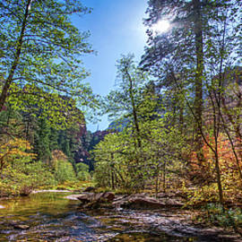 Lynn Bauer - Fall Color on the West Fork Trail