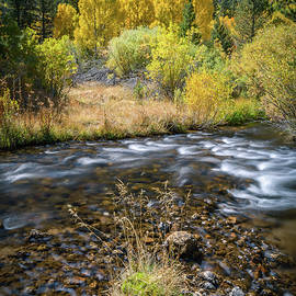 Alexander Kunz - Fall Colors at South Fork Bishop Creek