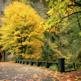Wes and Dotty Weber - Fall Colors Oneonta Gorge Tunnel