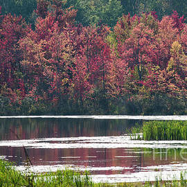 Fall Colours - Thompson Lake 7623 by Steve Somerville