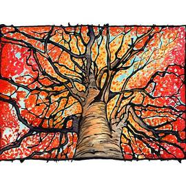 Kate LeVering - Fall Flush - Looking Up an Autumn Tree
