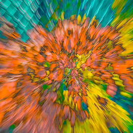 Bruce Pritchett - Fall Leaves Zoom Abstract
