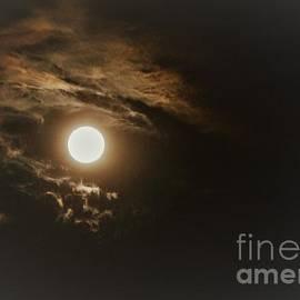 Diann Fisher - Fall Moon Drama