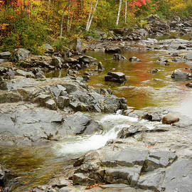 Alana Ranney - Fall on the Carrabassett River
