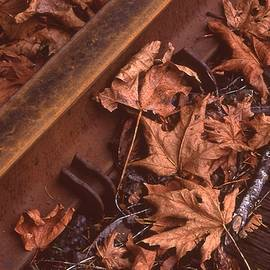 Fall On The Rails by HW Kateley