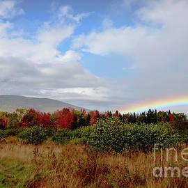 Alana Ranney - Fall Rainbow