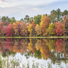 Jemmy Archer - Fall Reflections on Lake Chesdin