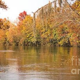 Andrea Anderegg - Fall - Savannah River Canal