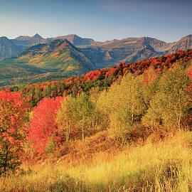 Johnny Adolphson - Fall splendor with Mount Timpanogos.