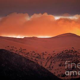 Wildlife Fine Art - Fall Sunrise with Snow