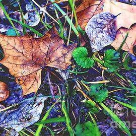 Fallen #3 by Patti Schulze