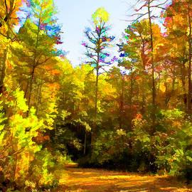 Lorraine Baum - Fallen Leaves