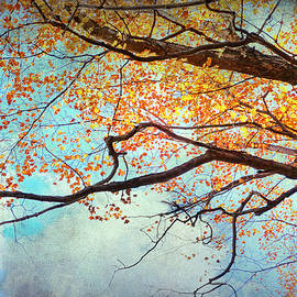 Kathi Mirto - Fallen For Fall