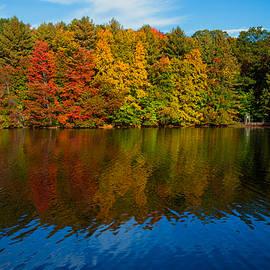 Karol Livote - New England Colors