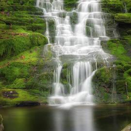 Bill Wakeley - Falls Brook Falls