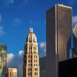 Famous Chicagoans - Andrew Soundarajan