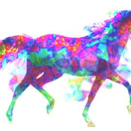 Fantasy Horse by Elinor Mavor