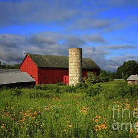 Rachel Cohen - Farm Morning