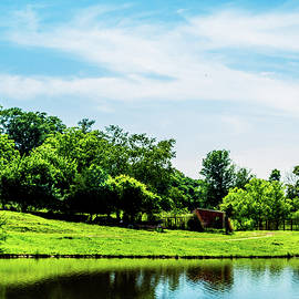 Barry Jones - Farm Pond - Rural Landscape