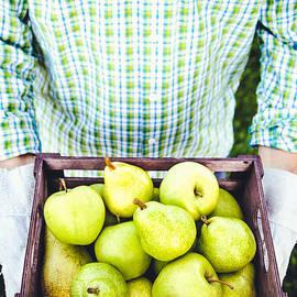 Mythja Photography - Farmer with pears