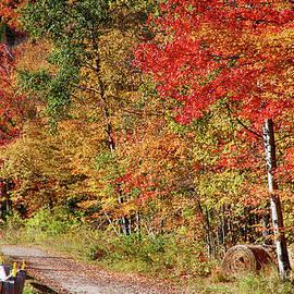 Jeff Folger - Farmers path of fall colors