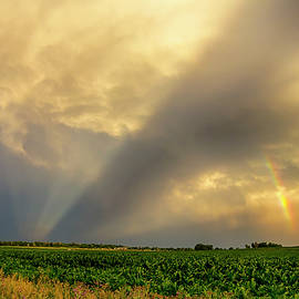 Farmers Weather Optics by James BO Insogna