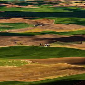 Farmland Textures Palouse by Leland D Howard