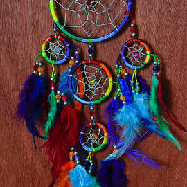 Tracy Hall - Feather Dreamcatcher