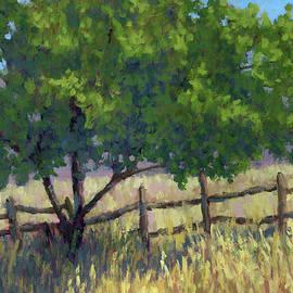 David King - Fence Line Tree