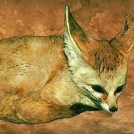 Fennec Fox by Jack Zulli