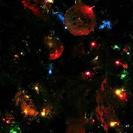 Fesival Of Lights by Amanda Kessel