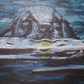 Fetch by Ronni Dewey