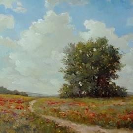 Gavrilescu Mircea - Field with poppies