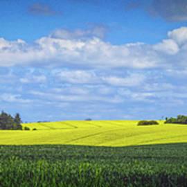 Colin Hunt - 10990 Fields