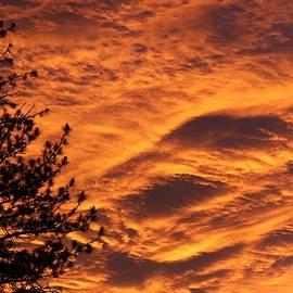 Diana Chase - Fiery Sunrise