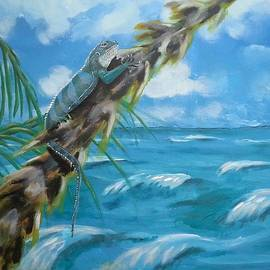 Judit Szalanczi - Fiji iguana