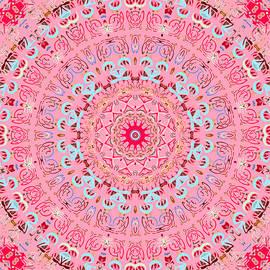 Fine China Kaleidoscope by Joy McKenzie