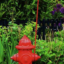 Marcus Dagan - Fire Hydrant In Provincetown