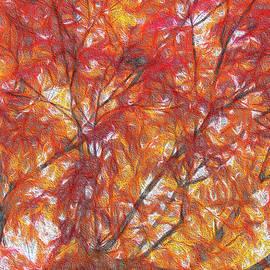 Fire Tree by Lorraine Baum