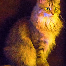 Fireside Feline by Sharon McConnell