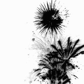 Firework Abstract 9 by Michelle Calkins