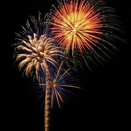 Firework Eyecandy by Elaine Malott