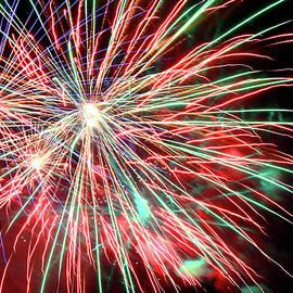 Toni Hopper - Fireworks over Redbud Park