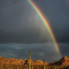 First Came The Rain Then The Rainbow  by Saija Lehtonen