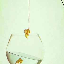 Amanda Elwell - Fishing